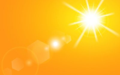 Diverse groups with common cause urge policymakers to let sun shine in